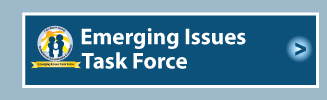 Emerging Issues Task Force